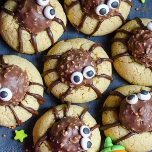 Bunch of chocolate truffle spider cookies