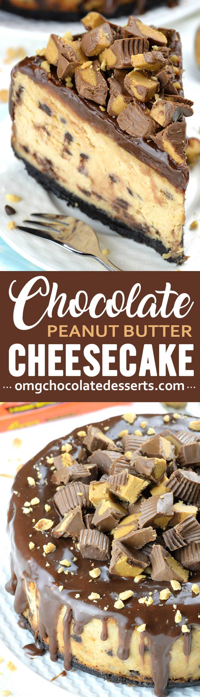 Rich and decadent, this Reese's Chocolate Peanut Butter Cheesecake Recipe is filled with chocolate and peanut butter and it will satisfy your peanut butter and chocolate cravings!