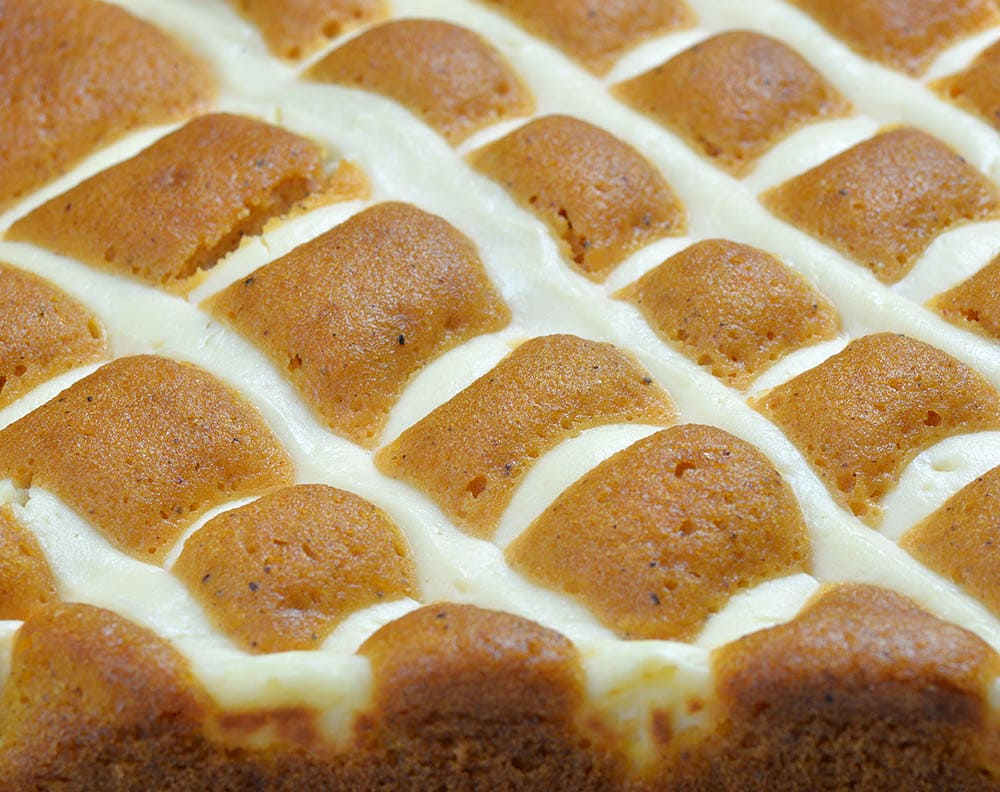Big plan of Cream Cheese Pumpkin Bars top texture.