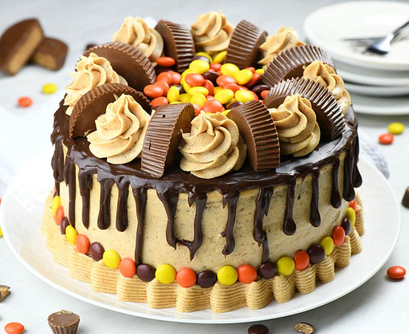 Peanut Butter Chocolate Cake garnished with Reese's cups and Reese's Pieces.