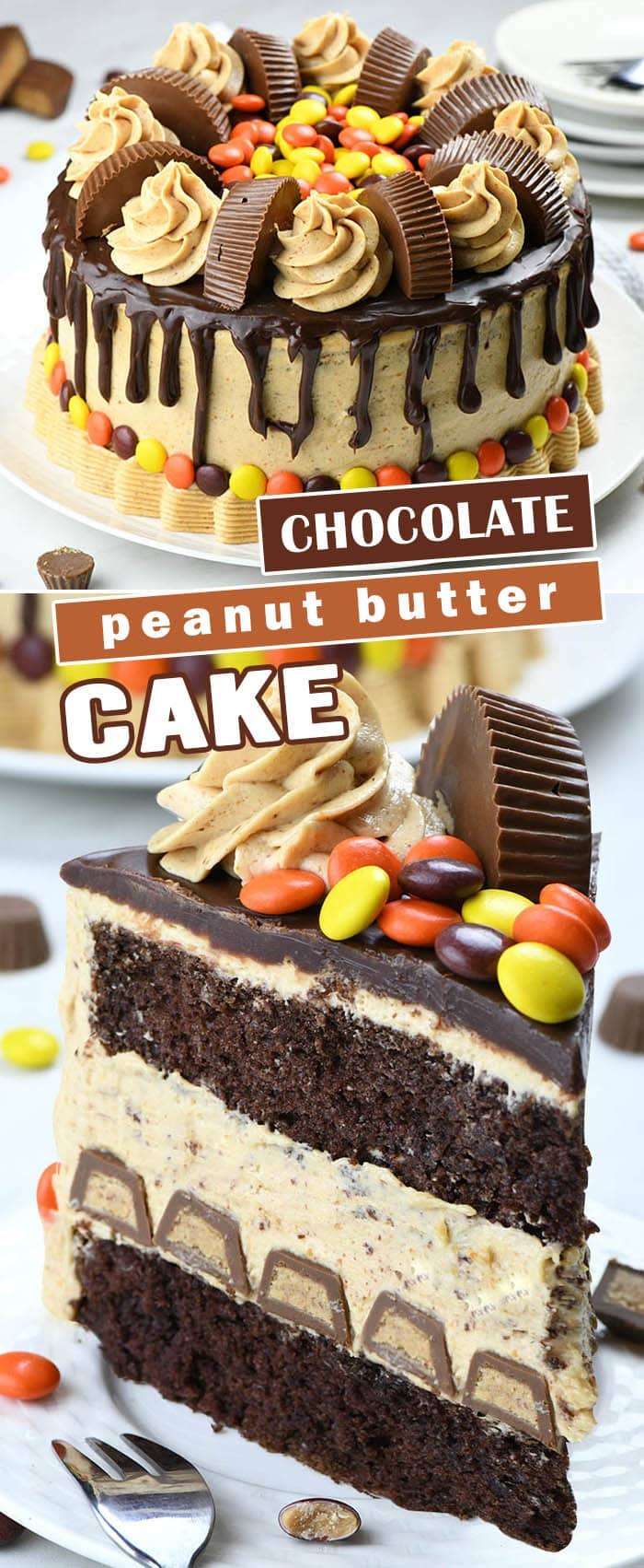 Peanut Butter Chocolate Cake is the ultimate chocolate peanut butter dessert recipe. Fudgy chocolate cake layers with creamy peanut butter cheesecake filling, overloaded with tons of peanut butter cups and silky milk chocolate ganache on top.